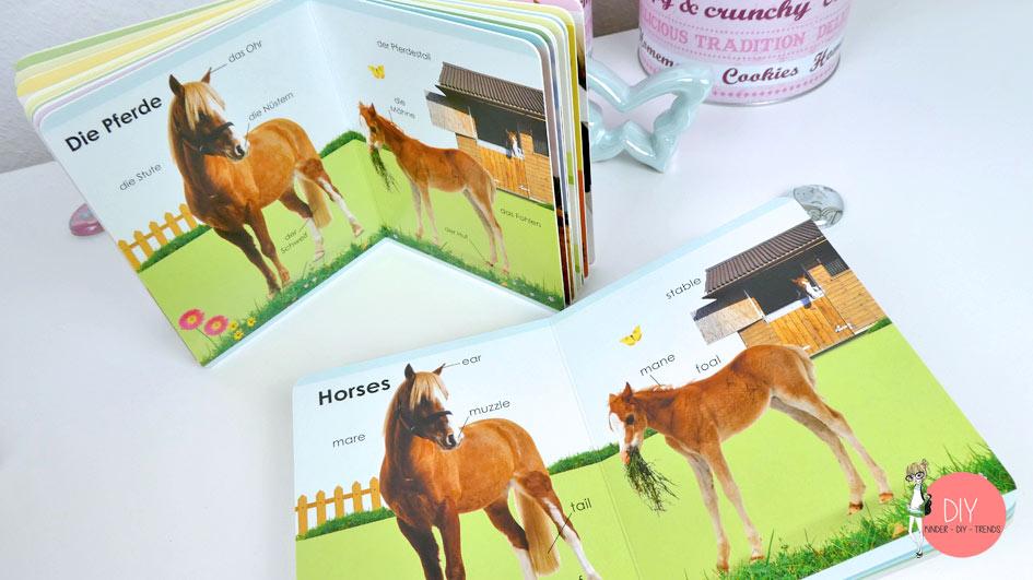 Englisch Wörterbuch für Kleinkinder - Pferden und Bauernhof