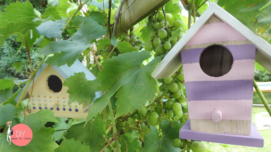 DIY Vogelhäuser Hotel als Dekoration in der Weinrebe