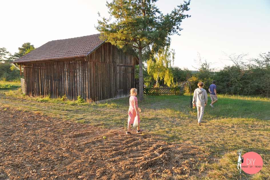 Mit Kindern Jahreszeiten wahrnehmen - Kastanien & Naturmaterialien sammeln