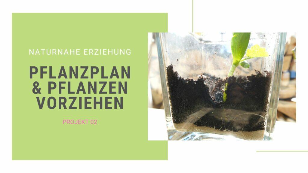 Gartenprojekt 02: Gemüse vorziehen und anpflanzen