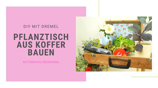 Pflanztisch bauen , Idee von Kinder-DIY-Trends, Kooperation mit Bosch Power Tools Dremel