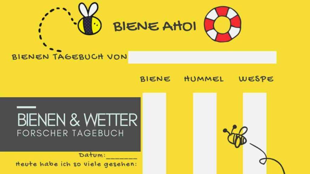 Sommerferien Idee für Kinder: Forschen, Bienen, Wetter: Ferientagebuch