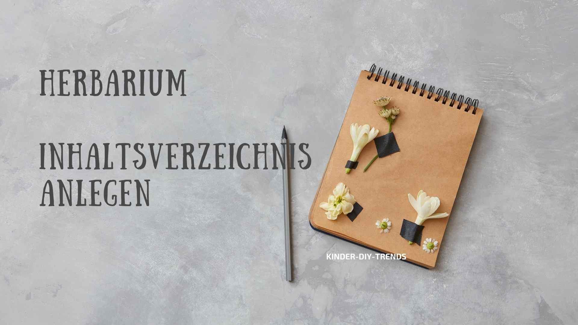 Herbarium - Inhaltsverzeichnis anlegen. Das gehört rein.