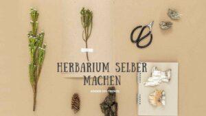 Herbarium selber machen. So legt man ein Herbarium an. Mit Vorlagen und Anleitung.