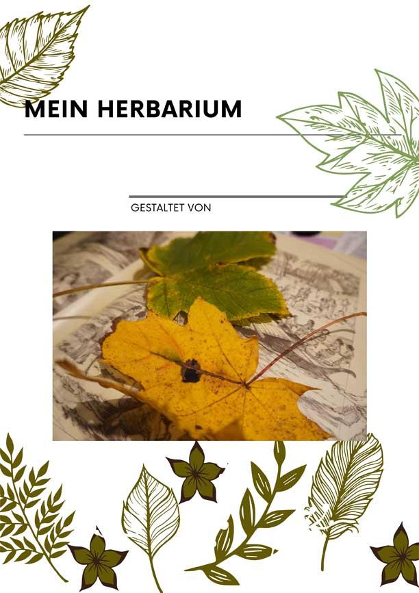 Mein Herbarium - Vorlage für den Unterricht, Vorschule oder zuhause