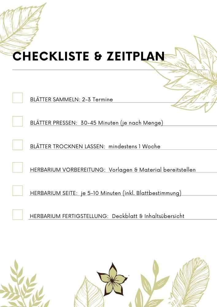 Herbarium anlegen - Checkliste und Zeitplan