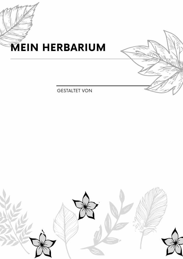 Herbarium Anlegen Anleitung Kostenlose Vorlage 1