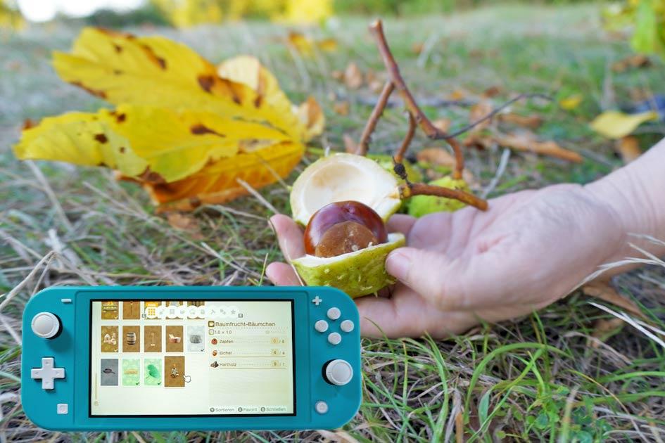 Kastanien sammeln & Baumfrucht Bäumchen basteln mit Nintendo Switch Lite Animal Crossing