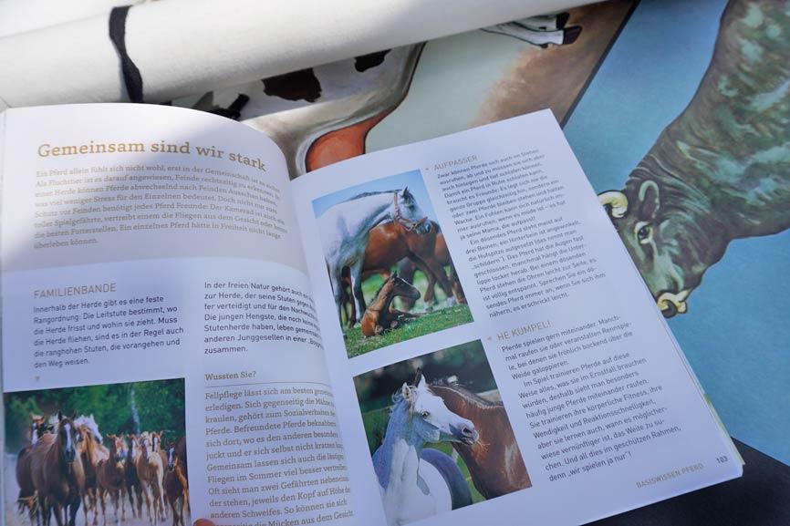 Blick ins Buch - Pferde Lexikon