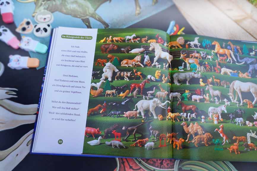 Ich finde was - Suchbuch für Kinder