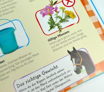 Informationen zur Pferdehaltung und Pflege