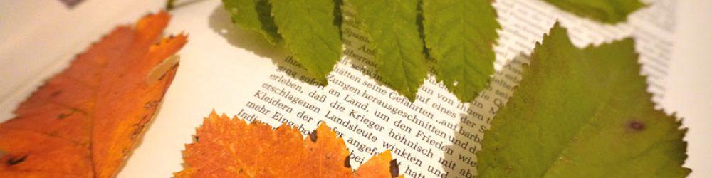 Blätter pressen mit einem Buch oder Blätterpresse