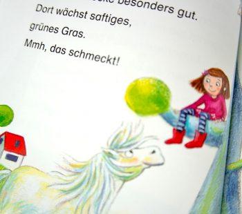 Blick ins Buch ein Pony in der Schule - Mein liebstes Pony Flocke