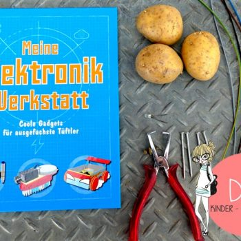 Experimente Buch