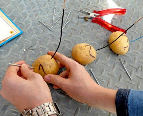 Batterie aus Kartoffeln bauen