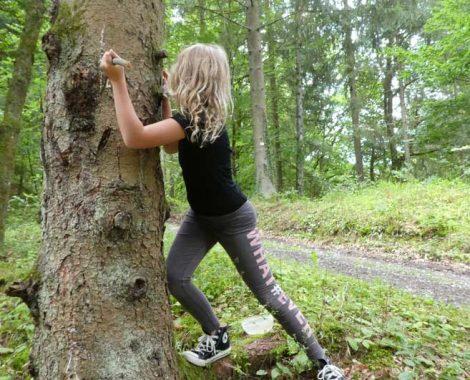 Kinder-DIY-Trends-Outdoor-DIY-Holzfackel-schnitzen-mit-Opinelmesser-Baum-mit-Harz