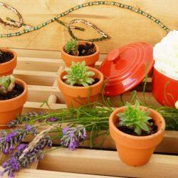 Pflanzregal selber bauen mit Perlen Einlegearbeiten