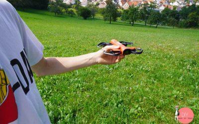 Kinderleichte Drohne bedienen - wir lassen den Quadrocopter Reely fliegen
