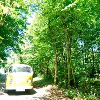 Familienausflug mit dem VW T2 Bulli
